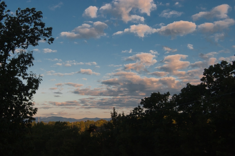 View from deck at Lone Oak Studio