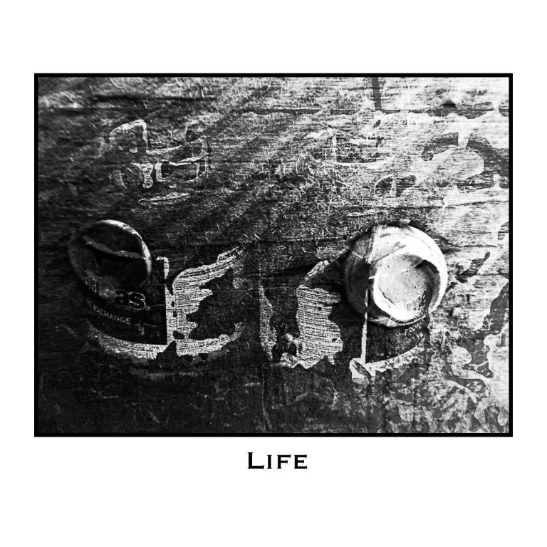 Life #1